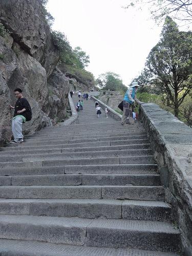 泰山の画像 p1_34